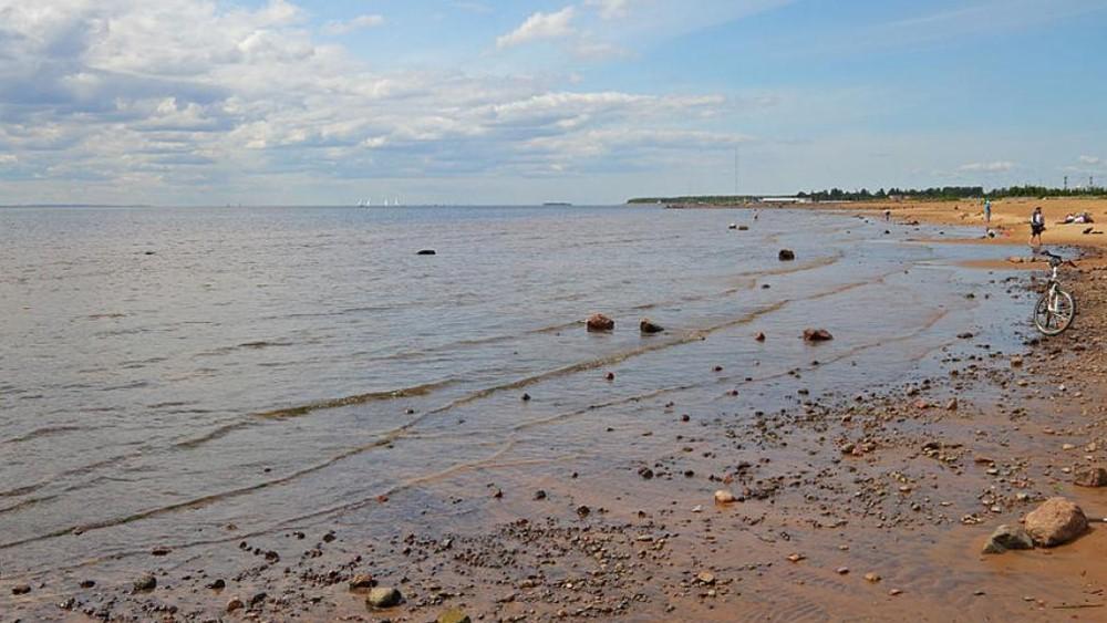 Место и время проведения акции «Чистый берег» пока неизвестно