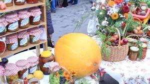 Праздник урожая «Две сотки» в Кронштадте