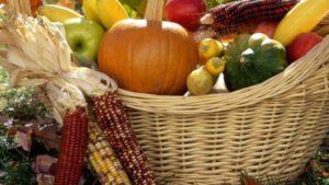 Кронштадт готовится к празднику урожая «Две сотки»