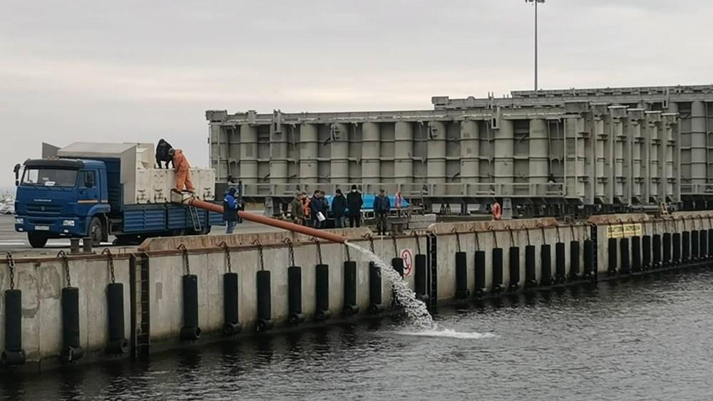Сеголеток балтийского сига выпустили в Финский залив