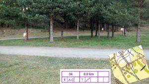 В Курортном районе прошли соревнования по дистанционному ориентированию