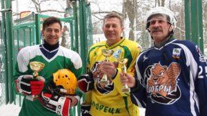 В сестрорецком парке «Дубки» состоялся турнир по хоккею