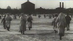 Выставочный проект «Кронштадтский лед», посвященный 100-летию Кронштадтского восстания
