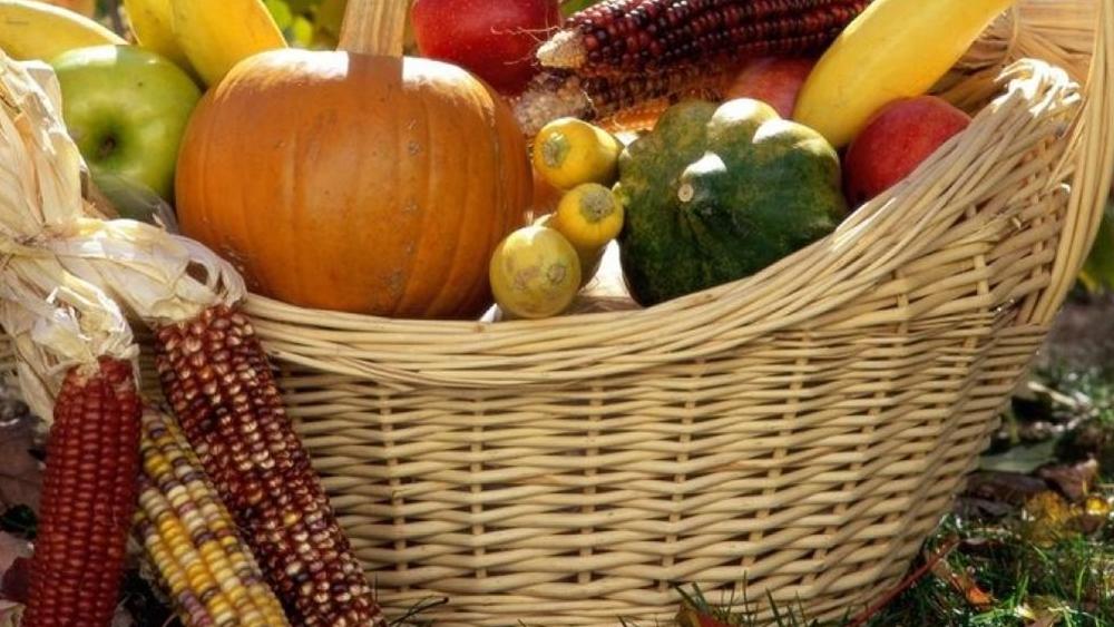 В Кронштадте пройдет праздник урожая садоводов-огородников «Две сотки»