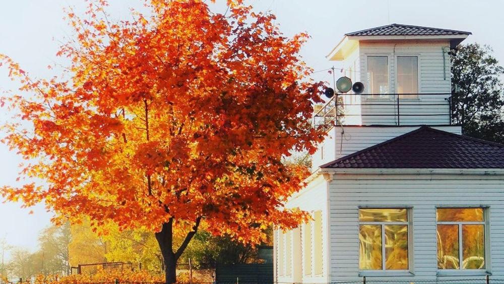 Зеленогорский дом детского творчества готовит выставку «Осенних красок хоровод»