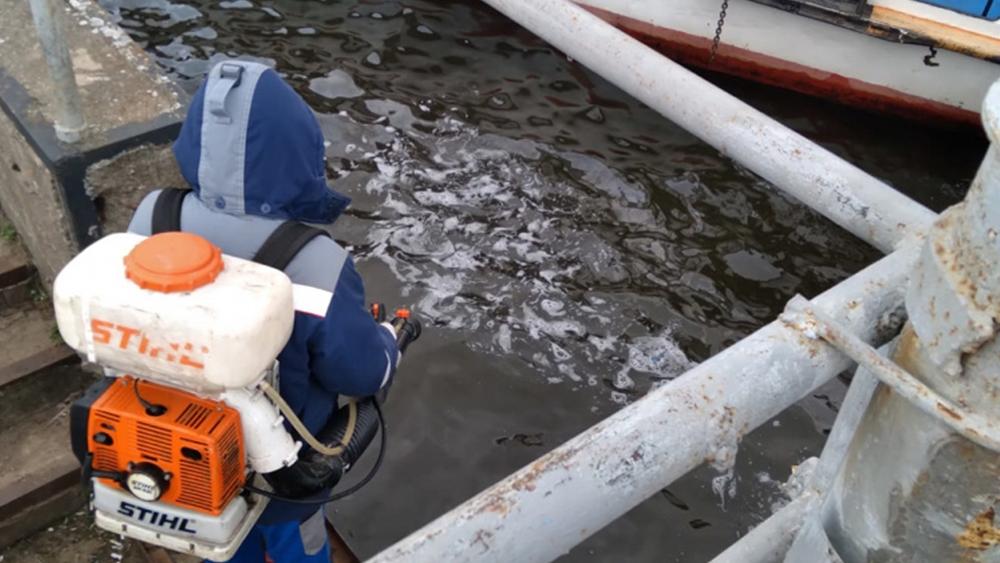 Экологи ликвидировали разлив нефтепродуктов в Кронштадте