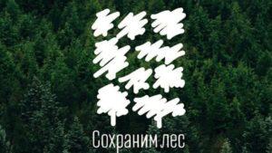 В сквере Пограничников высадят 20 сосен в рамках акции «Сохраним лес»