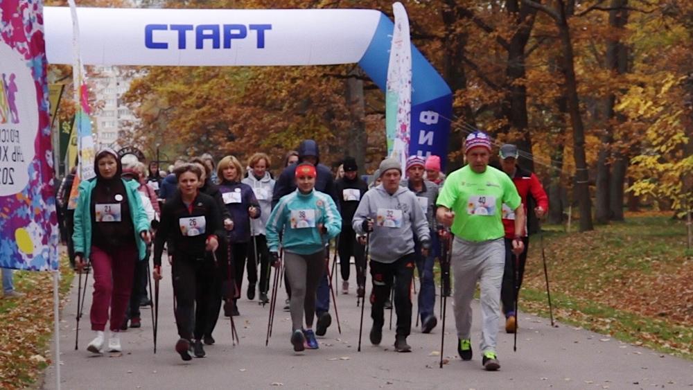 Фестиваль скандинавской ходьбы прошел в сестрорецком парке «Дубки»